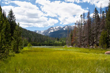 view of Cub lake in Rocky Mountains National Park, Colorado in summer
