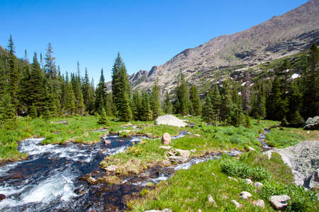 mountain river in summer, Rocky Mountains National Park, USA