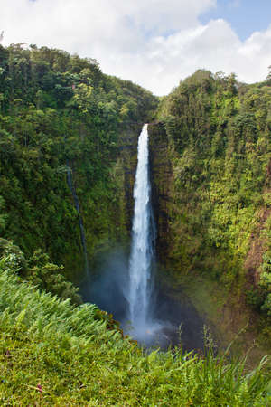 Akaka Falls in Hawaii Big Island