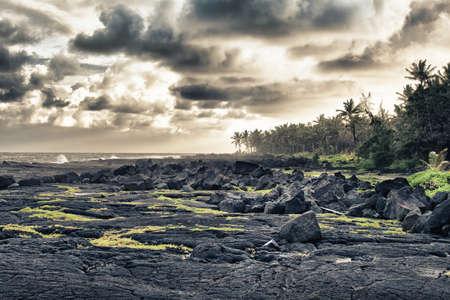 playa de lava tropical y palmeras en Hawai HDR Foto de archivo - 13104053