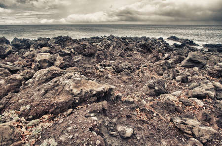 lava rocks on the shore in Hawaii Stok Fotoğraf - 13526434