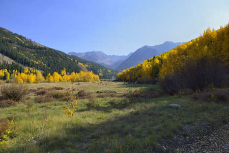 valley with golden and green aspen in Colorado during foliage season photo