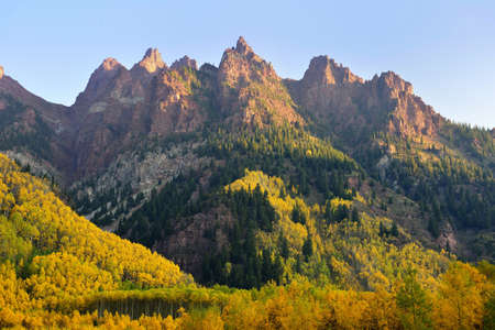 aspen leaf: Elk Mountains of Colorado with golden and green trees during foliage