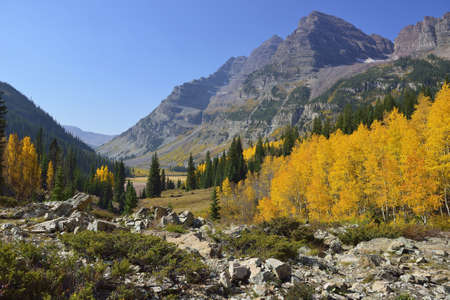 Elk Mountains of Colorado with golden and green aspen during foliage