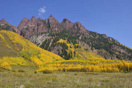 Elk Mountains of Colorado with golden and green aspen during foliage photo