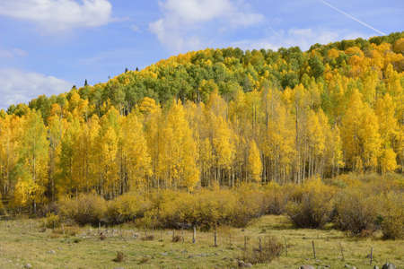 view of colorado mountains and golden trees during fall season photo