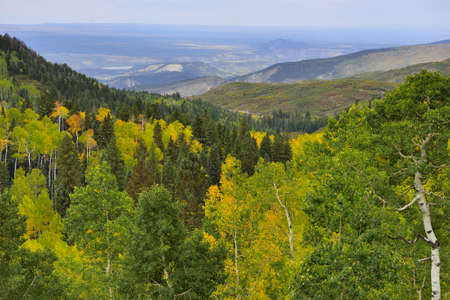 valley with golden and green trees in colorado during fall photo