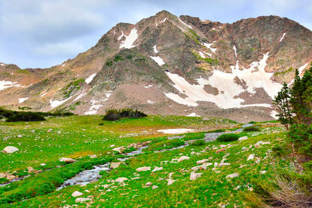 alpine tundra: stream in the high alpine tundra in Rawah Wilderness, Colorado during summer Stock Photo