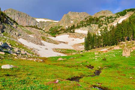 alpine tundra: high altitude alpine tundra in Colorado during summer