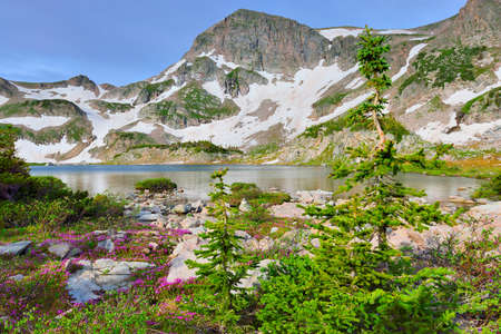 alpine tundra: high altitude alpine tundra and a mountain lake in Colorado during summer