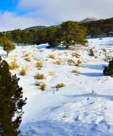 hike near the Great Sand Dunes National Park, Colorado in winter