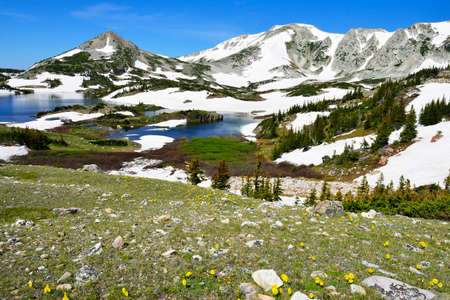 Snowy Range Mountains, lake and alpine meadow with wild flowers in Medicine Bow, Wyoming in summer Stock Photo