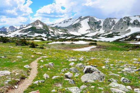 Trail through the alpine meadow with wild flowers in Snowy Range Mountains of  Medicine Bow, Wyoming in summer photo