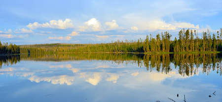 reflection: Reflection of trees in the lake at Ice Lake Campground in Yellowstone National Park in Summer Stock Photo