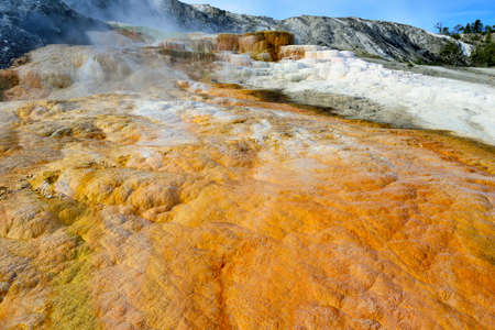 Mound Terrace in Mammoth Hot Springs area of Yellowstone National Park, Wyoming photo