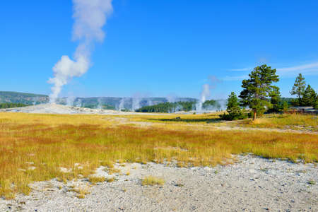 Upper Geyser basin valley of Yellowstone National Park, Wyoming photo