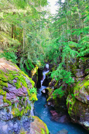 hidden waterfall along the Avalanche lake trail in Glacier National Park photo