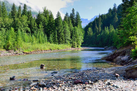 walk in the park: mountain river in Glacier National Park, Montana in summer