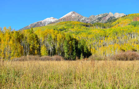 snow covered mountains: landscape view of the colorful alpine scenery with snow covered mountains during foliage season at Kebler and Ohio Passes Stock Photo