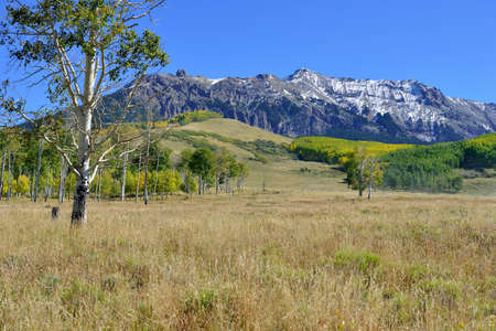 mountains with colorful yellow, green and red aspen during foliage season on Last Dollar road in Colorado Stock fotó