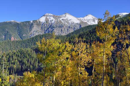 snow covered mountains: snow covered mountains and yellow aspen during foliage season Stock Photo