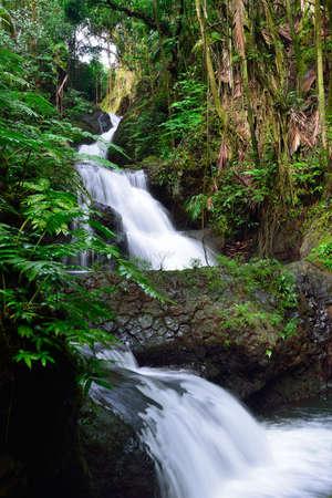 Onomea Falls located in Hawaii Tropical Botanical Garden on the island of Oahu, Hawaii Stock Photo