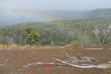 Rainbow over the old lava field trail in Volcanoes National Park, Big Island of Hawaii, USA