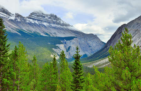 Alpine scenery along the Icefields Parkway between Jasper and Banff in Canadian Rockies