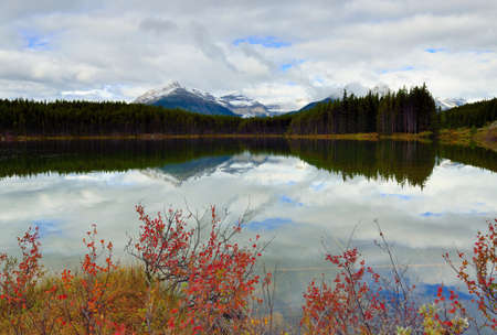 Beautiful high mountains of the Canadian Rockies reflecting in an alpine lake along the Icefields Parkway between Banff and Jasper during foliage season with changing yellow, green and red leaves