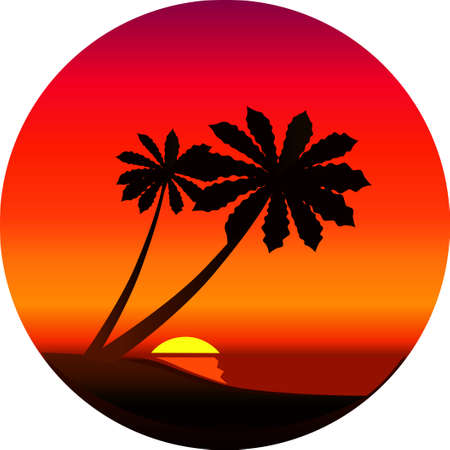 Silhouette of a palm trees at sunset
