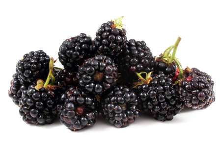 Blackberries Archivio Fotografico
