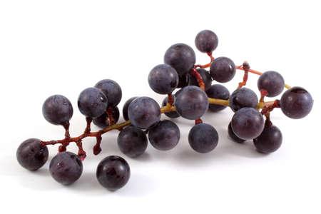 grape cluster: Wine grape cluster