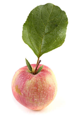 Fuji apple with leaf