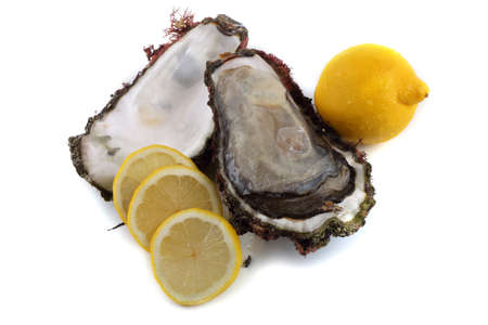 Opened oyster and lemon