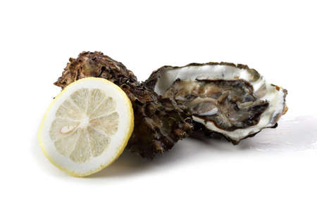 Oysters and lemon slice Stock Photo