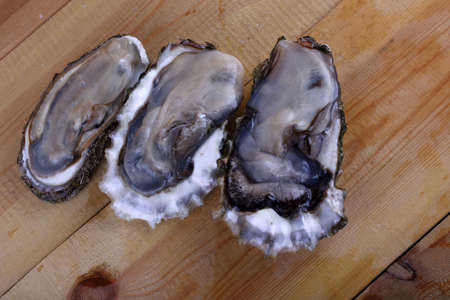 Oysters on table