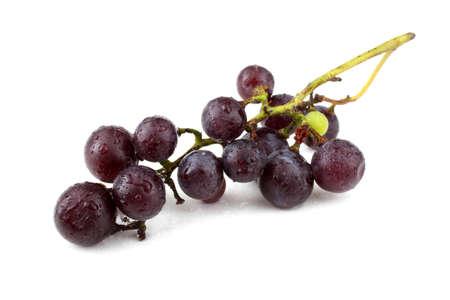 Black wine grape. (For red wine) Stok Fotoğraf