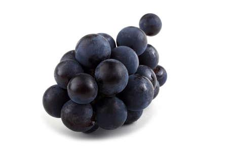 Black wine grape. Wine variety, for red grape
