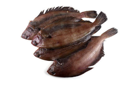 Korean flounder. Fat variety