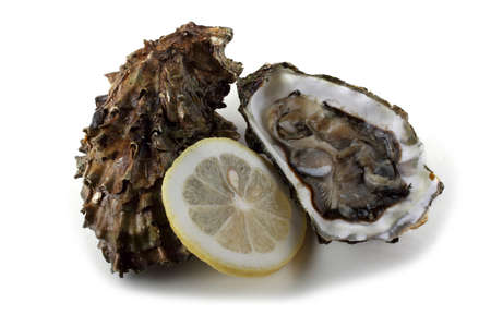 Oyster, opened oyster and lemon slice