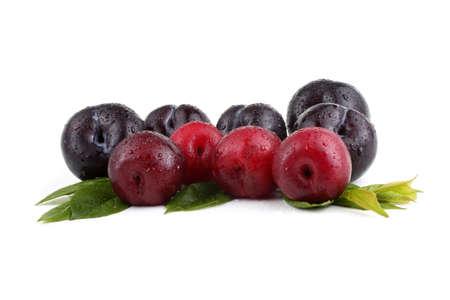 Black plum and leaves