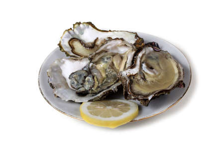 Oysters and lemon slice on dish
