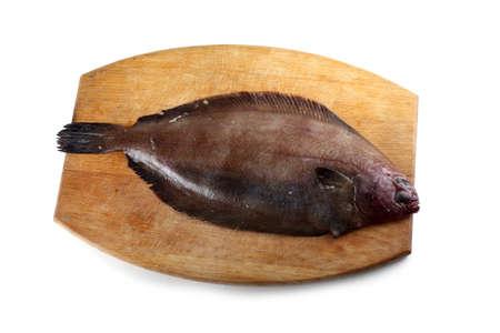 Korean flounder on cutting board. Fat variety