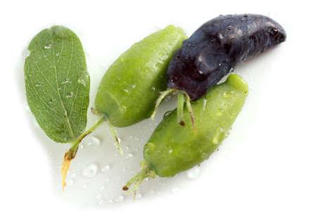 Honeyberry isolated on white. Ripe and unripe berries Stockfoto