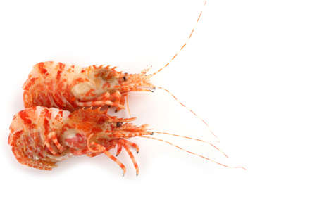 Shrimps isolated on white (northern Bering shrimp)