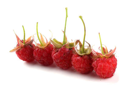 Five raspberries isolated on white