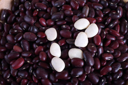 Kidney beans background Archivio Fotografico