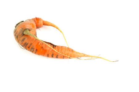 Ugly carrot isolated on white