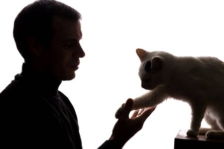 Young man play with a kitten - silhouette