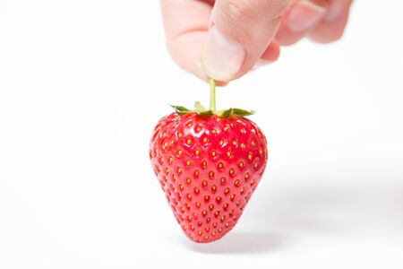 Red and ripe strawberry in hand on a white background - Isolate 版權商用圖片